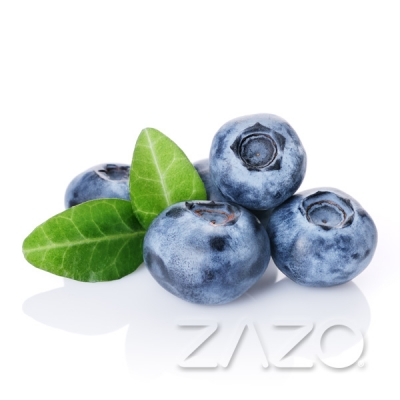 ZAZO Blueberry 0 mg Nikotin 10 ml